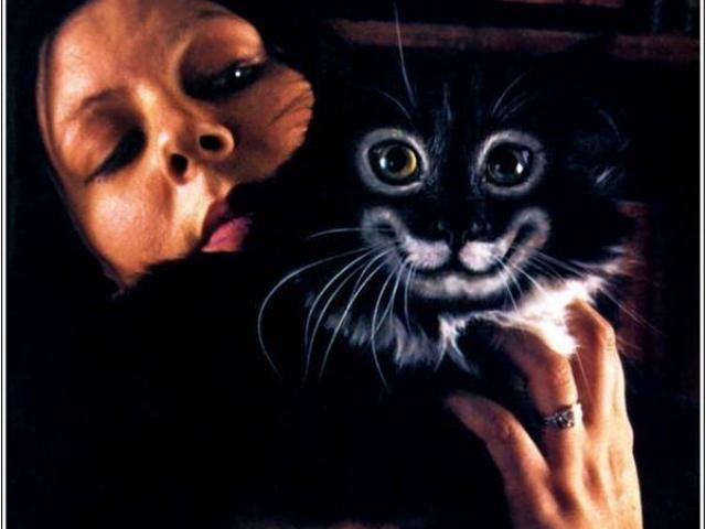 Pintar Gatos Cat painting