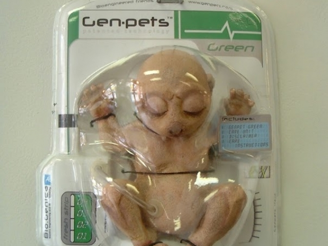 Los Genpets son animales reales   Quiero Algo Diferente