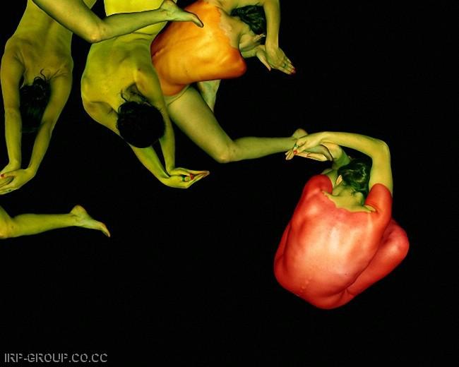 cecelia-webber-flores-a-la-humana Quiero Algo Diferente (18)