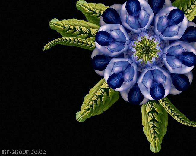 cecelia-webber-flores-a-la-humana Quiero Algo Diferente (3)