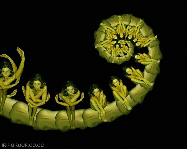 cecelia-webber-flores-a-la-humana Quiero Algo Diferente (4)