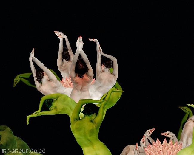 cecelia-webber-flores-a-la-humana Quiero Algo Diferente (5)