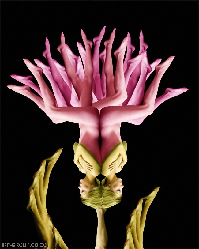cecelia-webber-flores-a-la-humana Quiero Algo Diferente (6)